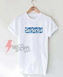 Jacob-sartorius-box-logo-merch-blue-Shirt-On-Sale