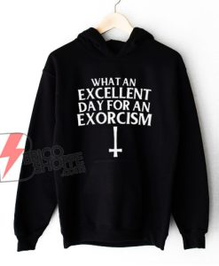 What an Excellent Day for an Exorcism Hoodie - Funny Hoodie